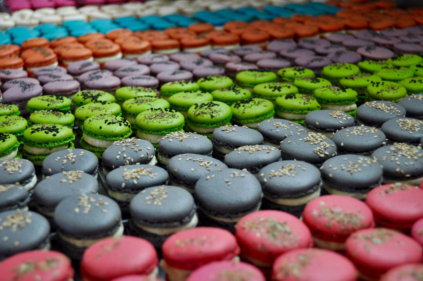 LES MACARONS AUX FROMAGES